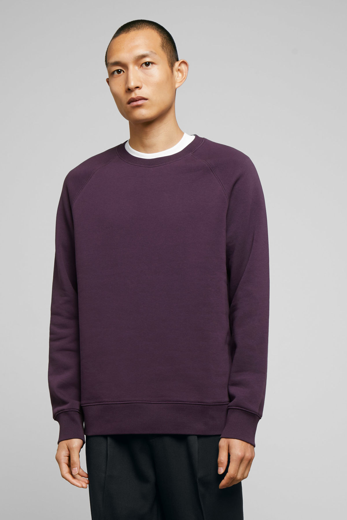 Model front image of Weekday paris sweatshirt in purple