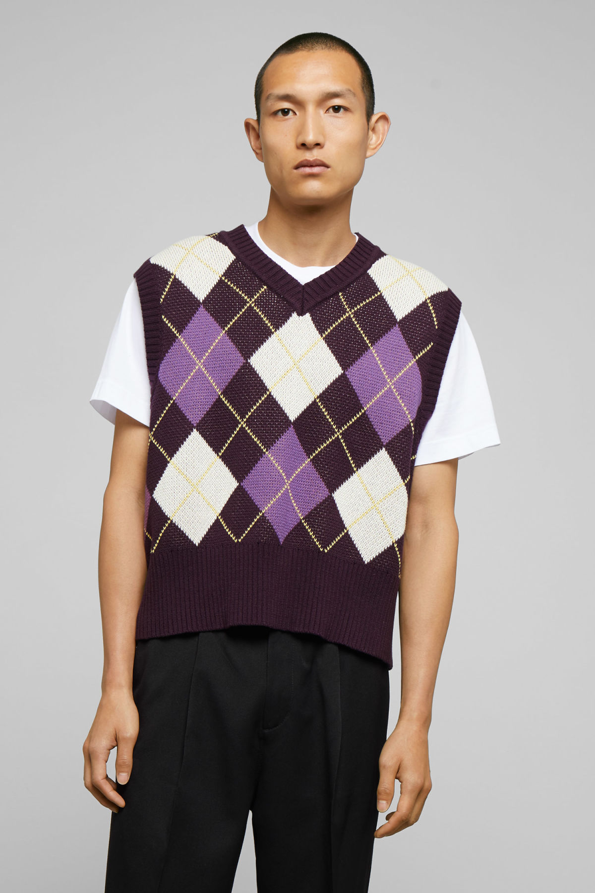Model front image of Weekday ayo checked vest in purple