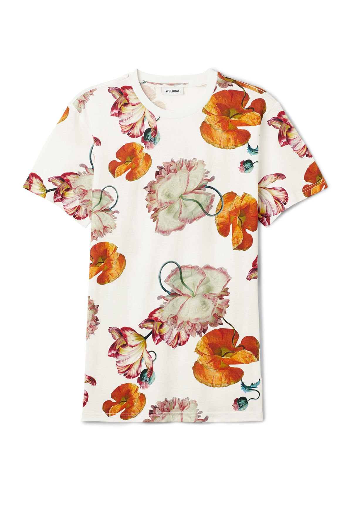 Front image of Weekday alan tulip t-shirt in white