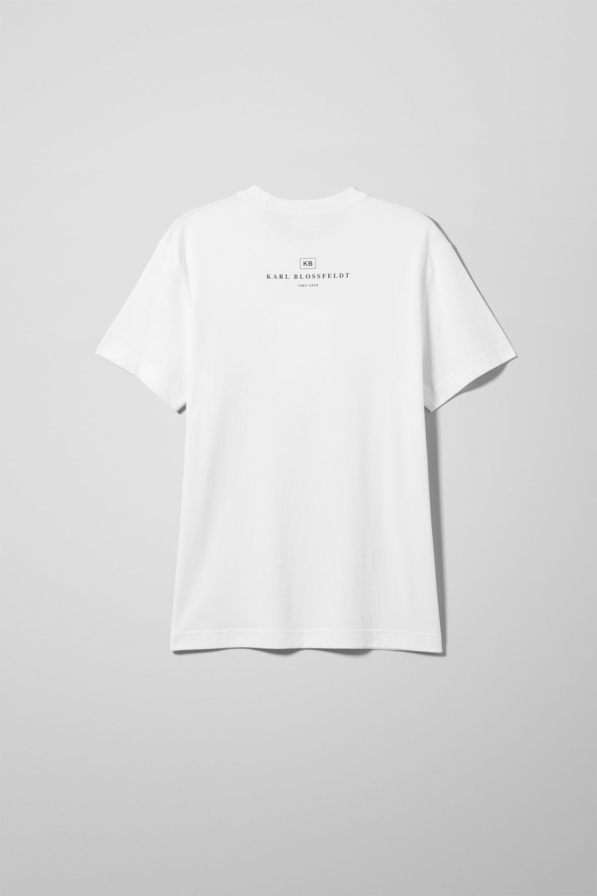 Back image of Weekday billy bloss t-shirt in white