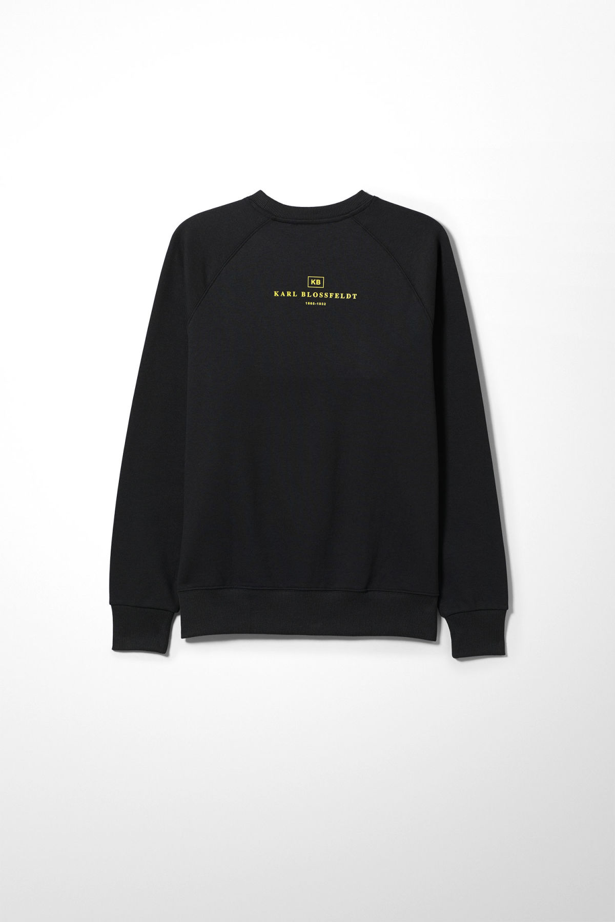 Back image of Weekday romano bloss sweatshirt  in black
